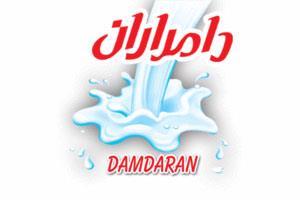 Damdaran Company